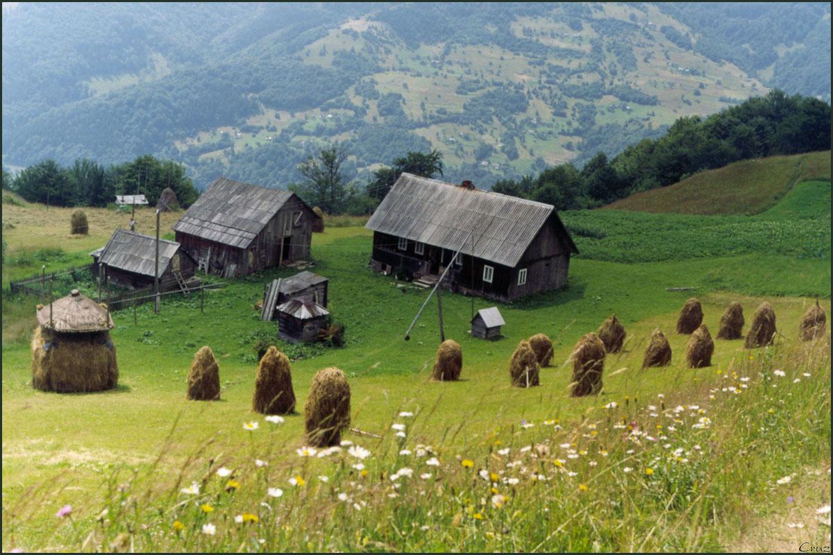 Hejno patnácti vesničanů